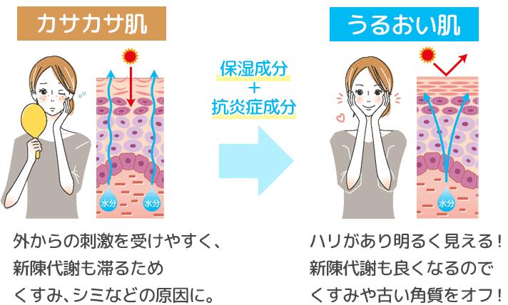 保湿成分と抗炎症成分の美白効果